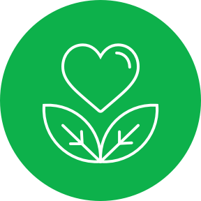 Wellness Programs Icon