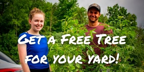 man and woman collecting their free tree giveaway.